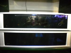 Unico Secondo, Rega RS10, velodyne mac vee, 008